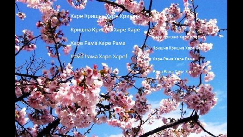 Харинама! Челябинск! Центральный Парк Культуры и Отдыха им. Ю.А. Гагарина