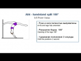 A84 - HANDSTAND SPLIT 180 - (0.5) - CODE OF POINTS (POSA - Pole Sports & World Arts Federation)