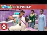 Официальный трейлер игрового процесса The Sims 4 «Кошки и собаки»: ветеринар