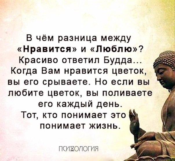 Фото №456257094 со страницы Алены Филипенко