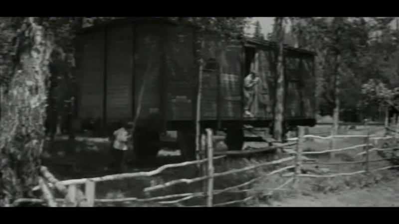 «Дальние страны» (1964) - киноповесть, реж. Мария Фёдорова