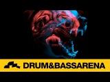 Dub Elements - Dope