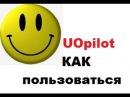 Как пользоваться UOpilot Простейшие скрипты