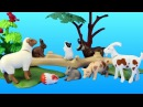 6635 Playmobil City Children's Petting Zoo Toy Animals Building Set Build Review