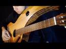 Harry Potter Hedwig's Theme 18 String Harp Guitar Jamie Dupuis