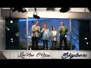 Ellen Welcomes the Fan Sponsor of Her Skybox