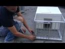Jaula para palomas yasser ag7864000910
