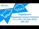 Интересные Подробности Фундаментального Анализа Обзор BitCoin BTC Lisk LSK Quantum QAU RCOH ADA TRX
