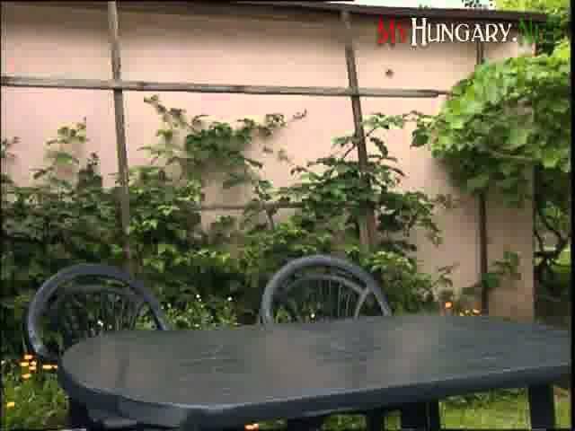 Изучение венгерского языка шаг за шагом Серия 16