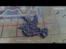 Международная акция Единый час духовности Голубь мира в г. Дебрент, Республика Дагестан