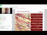 iTeam - Разработка стратегии шаг за шагом