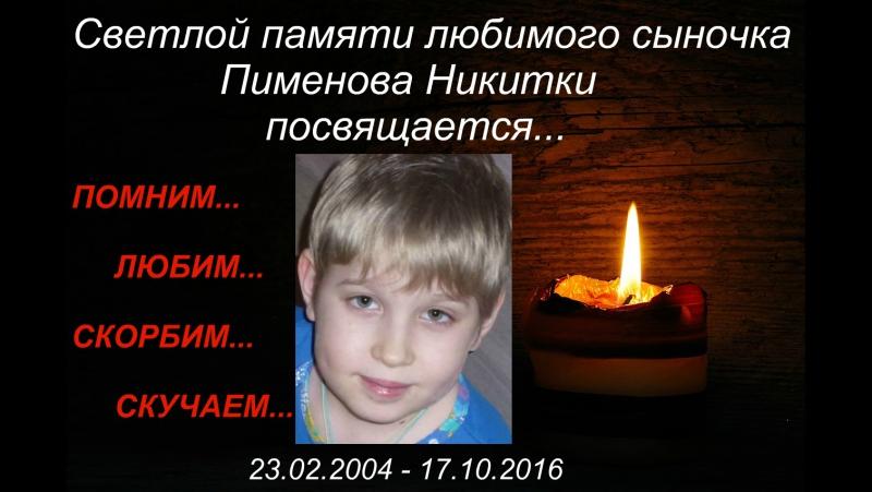 Светлой памяти Никитки посвящается...