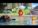 ► Angry Birds в кино — Русский трейлер (2016)