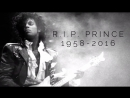 Prince - Purple Rain (Damien Escobar Violin Cover)