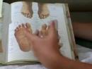 How to Give a Reflexology Massage - Using The Reflexology Foot Chart