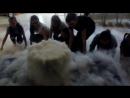Белое облако научное шоу с жидким азотом Шоу центр Престиж