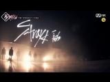 [Тизер] Новое шоу на выживание от JYP - «Stray Kids» [русс. cаб]