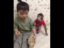 Maymun ve çocuk