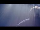 D-LITE (from BIGBANG) - そばにいてよ M_V