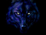 Paul Webster - The Wolf