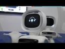 Шагающий двуногий робот Ubtech Walker (Robotics)