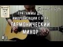 Три гаммы для импровизации С НУЛЯ 3 Гармонический минор