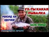 УХ-ТЫ КАКАЯ РЫБАЛКА  РЕКОРД НА УДОЧКИ  ЧАСТЬ 3  РЫБАЛКА НА ПЕЧОРЕ  FISHING ON THE FLOAT ROD