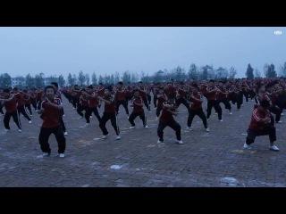 Fighting Wushu · #coub, #коуб