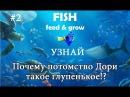 Fish feed and grow прохождение 2 ГЛУПЕНЬКАЯ ДОРИ