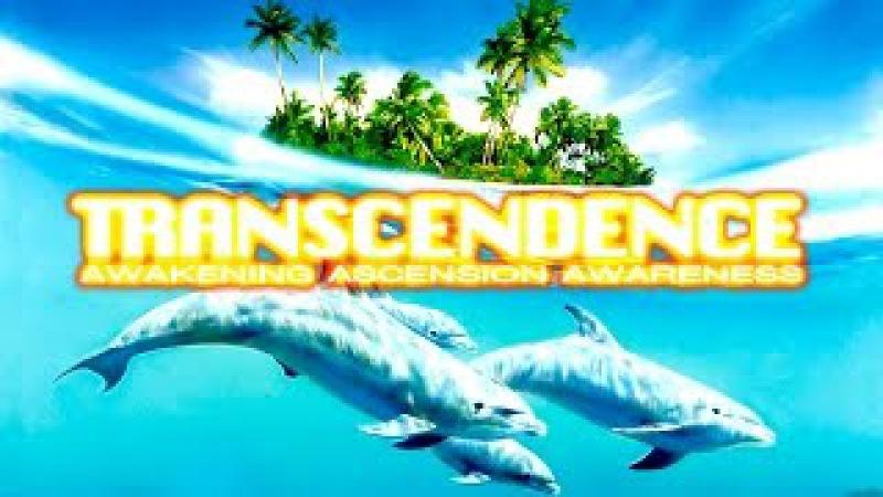 TRANSCENDENCE Body Mind Total Knowing Vitality Energy = Awakening Ascension Awareness Vibration