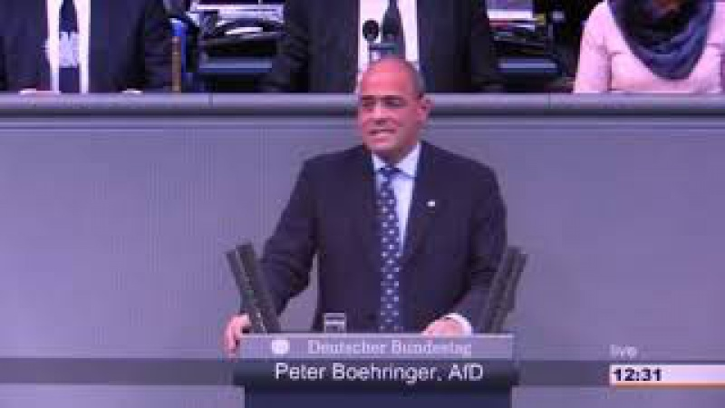 Nein für Deutsche Steuergelder unter EU Verwaltung! Peter Boehringer AfD