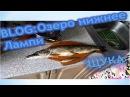 Рыбалка в Карелии 2016 Озеро верхнее Лампи Fishing in Karelia 2016 Lake Superior Lumpy