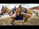 Самые смешные ПРИКОЛЫ С ЛОШАДЬМИ, Смешные лошади Funny horse, funny videos 6