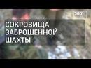 Глава экспедиции рассказал про найденные советские деньги