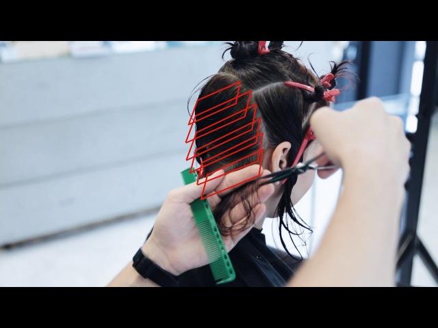 How to cut curly hair bob haircut tutorial