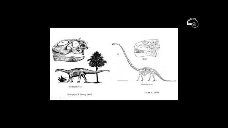 Александр Аверьянов Филогения динозавров
