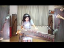 Red Hot Chili Peppers Otherside Gayageum ver by Luna