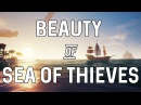 The Beauty of Sea of Thieves