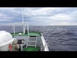 Соловки. Качка на Белом море.
