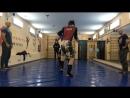 Совместная тренировка и спарринги с спортклубом Легион Гомель