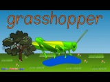 Insects Vocabulary and Spelling Chant for Kids.