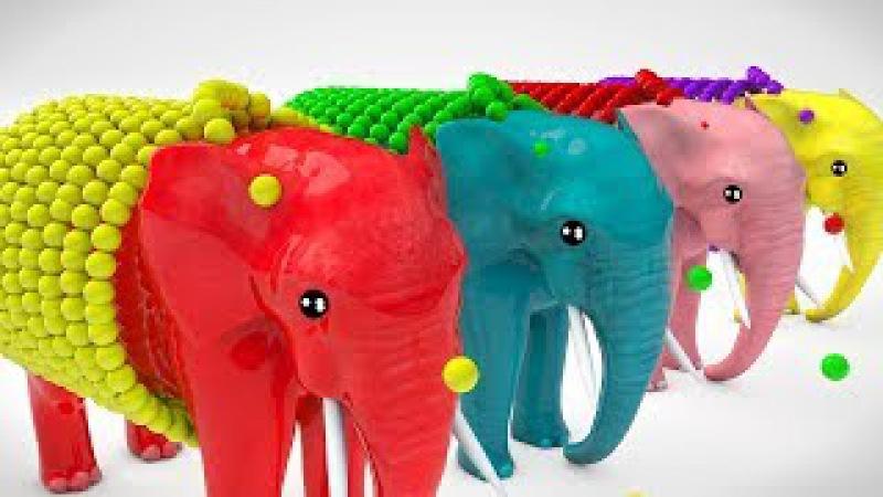 Learn Color Learn Shapes Animals Elephant W Grass Cartoon Nursery Rhymes for Children