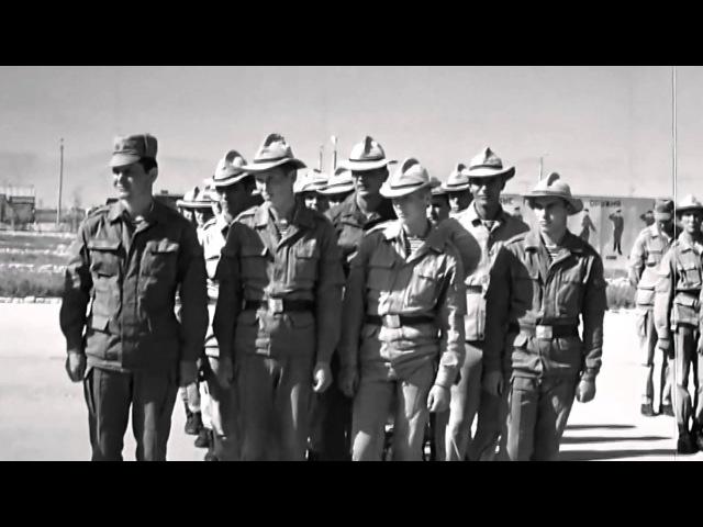 350-й гв. пдп. Хроника афганской войны. ВЕСЬ