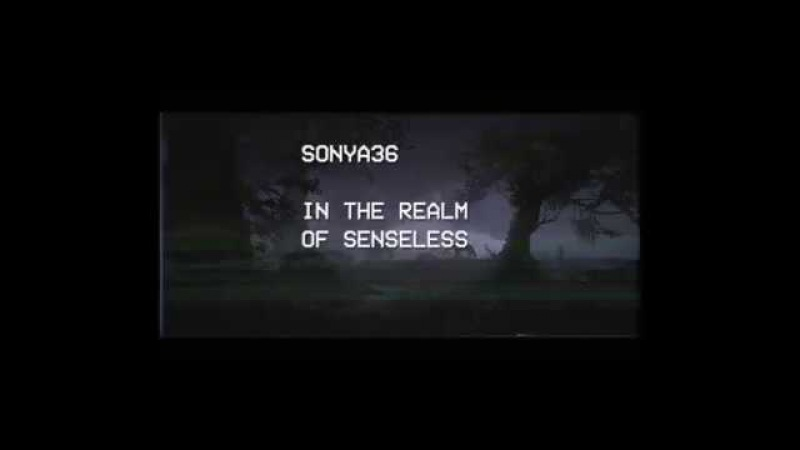 Sonya36 – In The Realm Of Senseless (Outro)