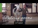 Лучшие видео youtube на сайте main-host Сериал Девичья охота 17 серия в HD 64 серии мелодрама комед