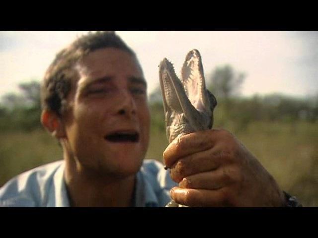 10 Выжить любой ценой - Эверглейдс. Man vs Wild - Everglades. Все серии: 1 сезон, 10 серия