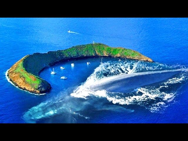 5 самых ЖУТКИХ и ОПАСНЫХ островов в мире