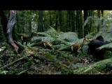 BBC Прогулки с Динозаврами - Духи Ледяного Леса (BBC Walking with Dinosaurs - Spirits of The Ice Forest)(1999)