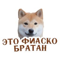 Сергей Невский - фото №13