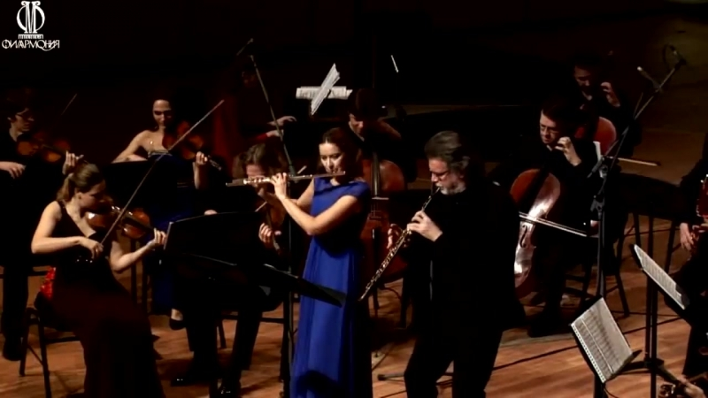 G. P. Telemann - Concerto for 2 flutes string and b. c. e-moll TWV52e2 - The State Academic Chamber Orchestra of Russia